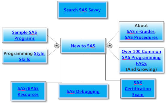 New to SAS Programming